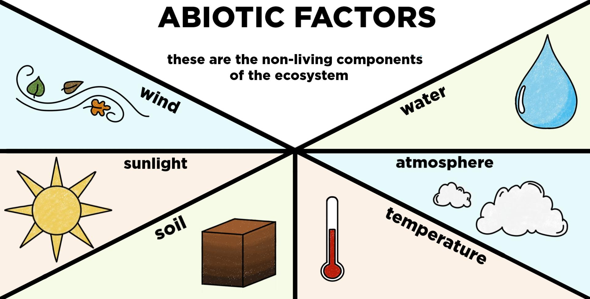 Abiotic Components Of Ecosystems  U2014 Definition  U0026 Examples