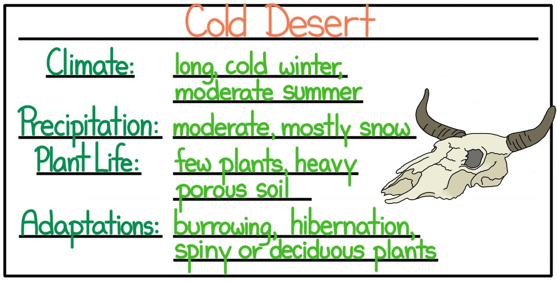 define cold desert