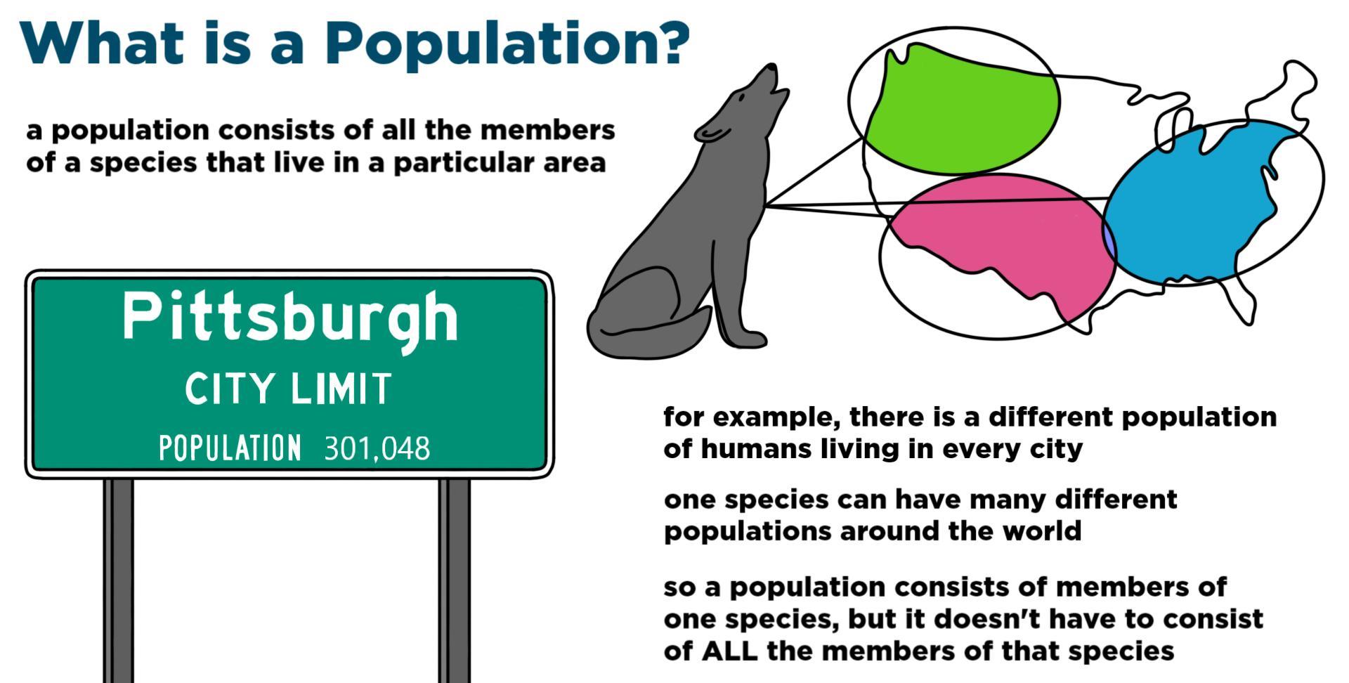 Population  Ecology   U2014 Definition  U0026 Examples